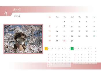 2014年度犬バカ連合会カレンダー_ページ_04.jpg