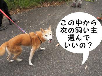 岩谷観音縦走20.JPG