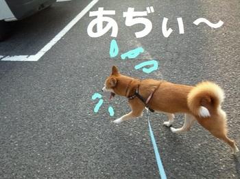 rakugaki_20110731_0001.jpg