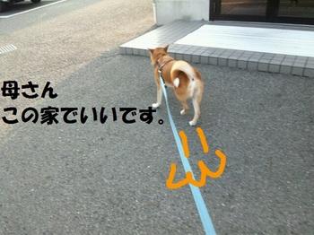 rakugaki_20110731_0002.jpg