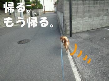 rakugaki_20110731_0003.jpg