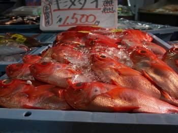とれとれ市場鮮魚.jpg