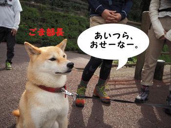 岩谷観音縦走1.JPG